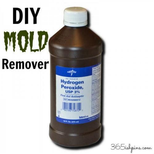 DIY Mold Remover