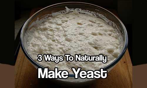 3 Ways To Naturally Make Yeast