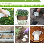 Insanely Clever Gardening Tips And Ideas