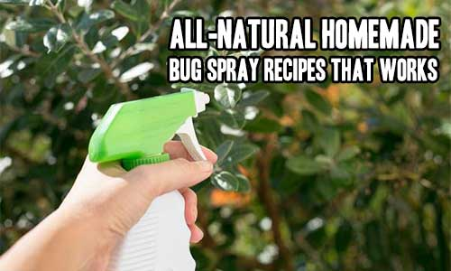 All-Natural Homemade Bug Spray Recipes That Works