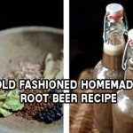 Old Fashioned Homemade Root Beer Recipe