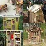 How to Build a Garden Wildlife Hotel Shelter