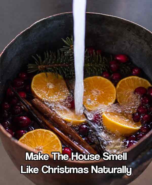 Make The House Smell Like Christmas Naturally