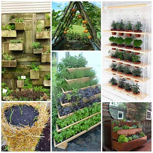 12 Amazing Vertical Gardening Ideas