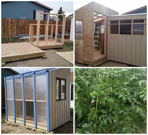 DIY Chicken Coop / Greenhouse Combo