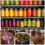 2000+ Free Canning Recipes For Any Season