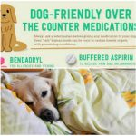Dog Friendly Over The Counter Medications