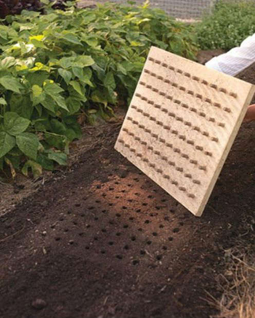 DIY: Make Your Own Planting Board
