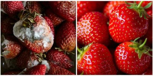 14 Genius Tricks for Making Fresh Produce Last Longer